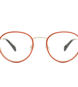 6301-ford-silver-red-rounded-optical-glasses-by-gigi-barcelona-01